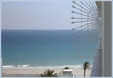 Rent Apartment in Marbella