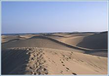 Mas Palomas Dunes