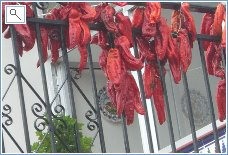 Peppers hanging out to dry