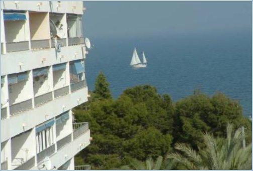 Punta Prima Apartment Rentals