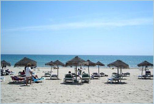 Local Beach at La Marina
