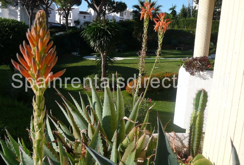 Calahonda holiday rentals oceanpoint for 11975 sunshine terrace
