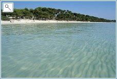 Puerto Alcudia beach