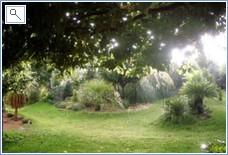 More garden areas