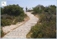 Regional Park - way to the Sea