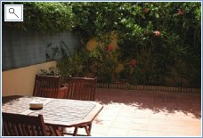 Spacious Patio with mature plants