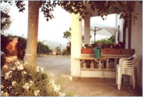 the porche