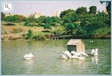 The lovely Paloma Park at Benalmadena