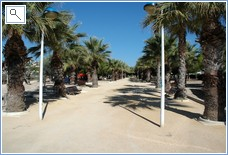 Palm tree walk by Moraira beach