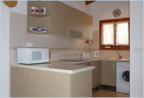 Kitchen area with usual modern appliances