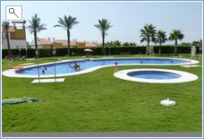 pool at the complex