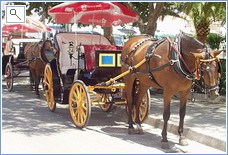 Horse and carriages of Mijas