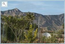 inland mountain range - Sierra Crevillente - 30 min. drive -