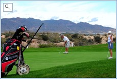 Owner playing golf
