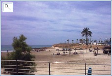 Playa Flamenca Beach