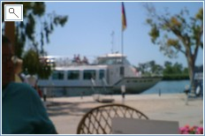 River trips on the Ebre