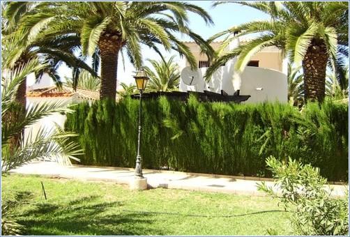 Rent Villas in Denia