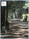 walking in the Refugio de Juaner