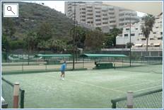 tennis at tipsy
