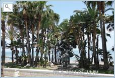 Be aware of the stray elephants! San Pedro Beach