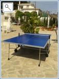 Table Tennis anyone?