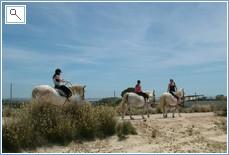 Horse riding at La Roufette. 20 minute drive