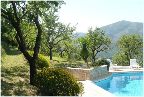 Pool and Almond Grove