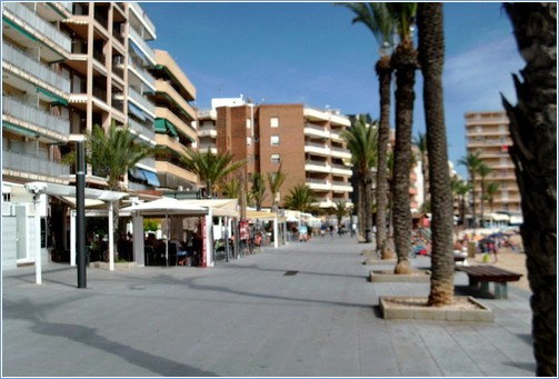 Torrevieja Apartment Rental