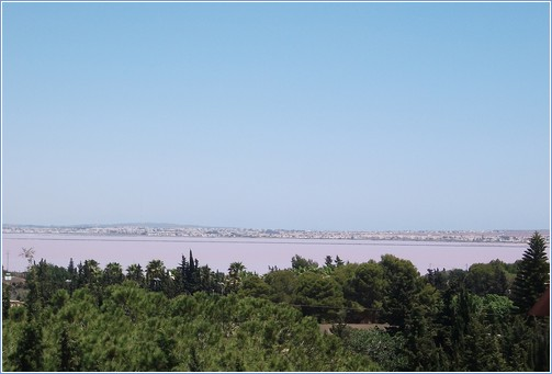 View of the salt lakes from the solarium