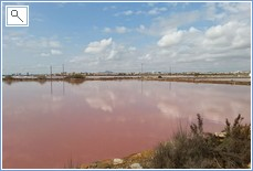 Salt lakes with flamingo's 300 metres away!
